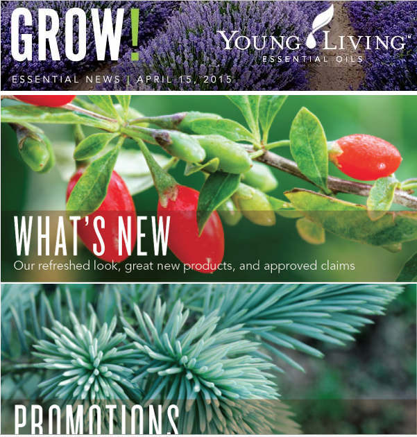 YLNewsletterGROW