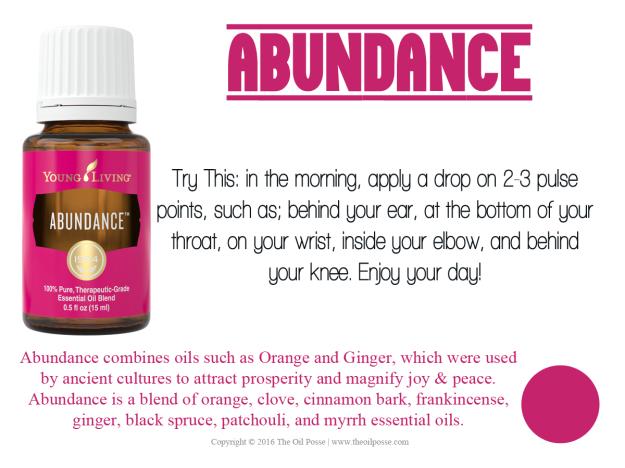 Abundance_LoveItShareIt