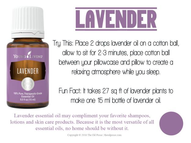 LoveItShareIt_Lavender