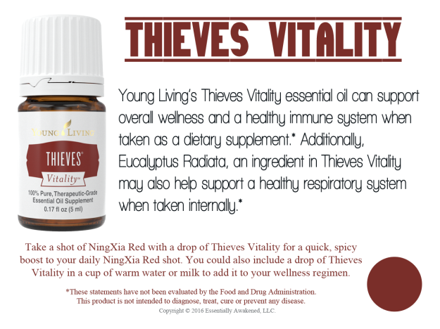 LoveItShareIt_Vitality_Thieves