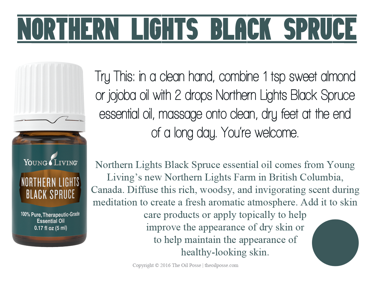 northernlightsblackspruce_loveitshareit