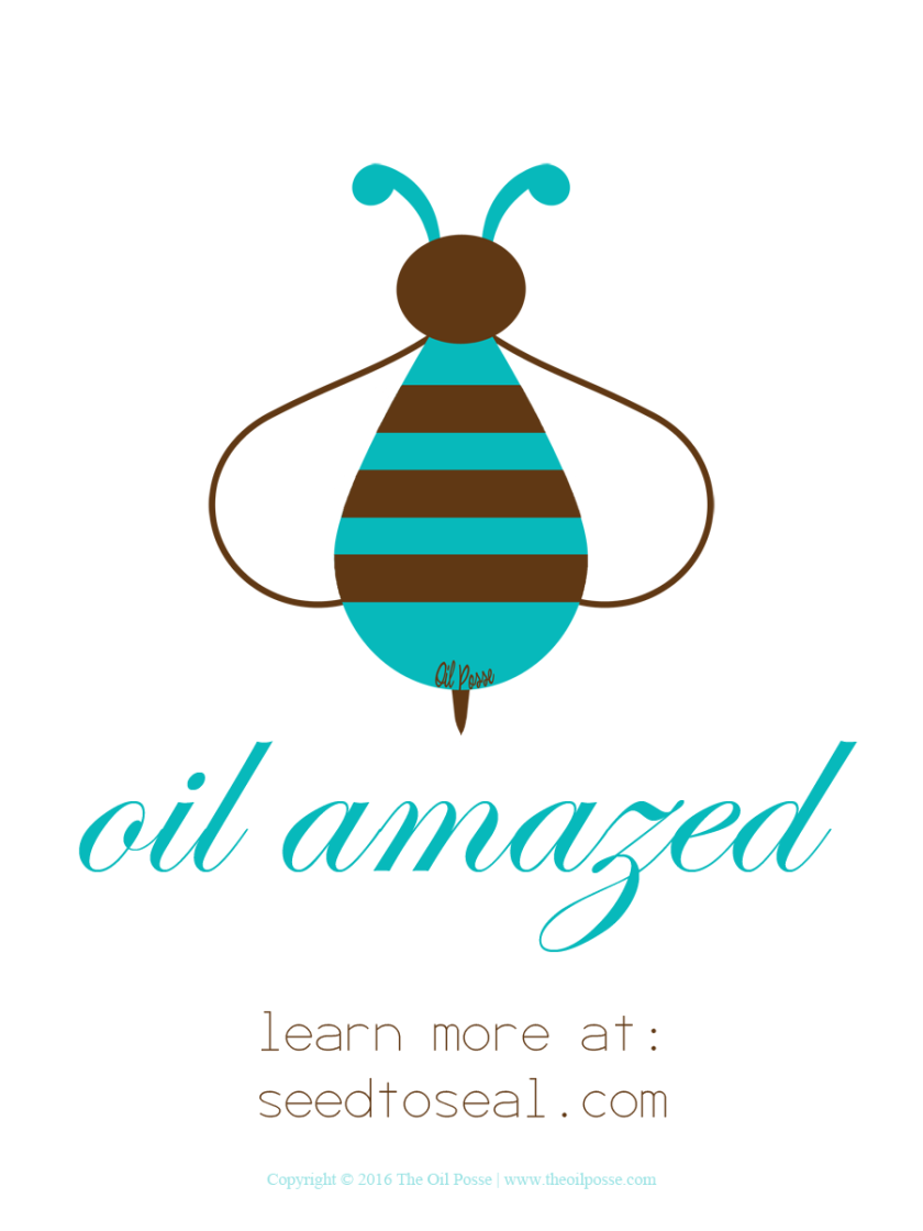 Bee_OilAmazed_Upright