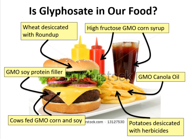 How-we-eat-glyphosate