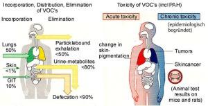 VOC_Effects