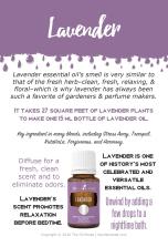 Lavender_EventCards_PSK