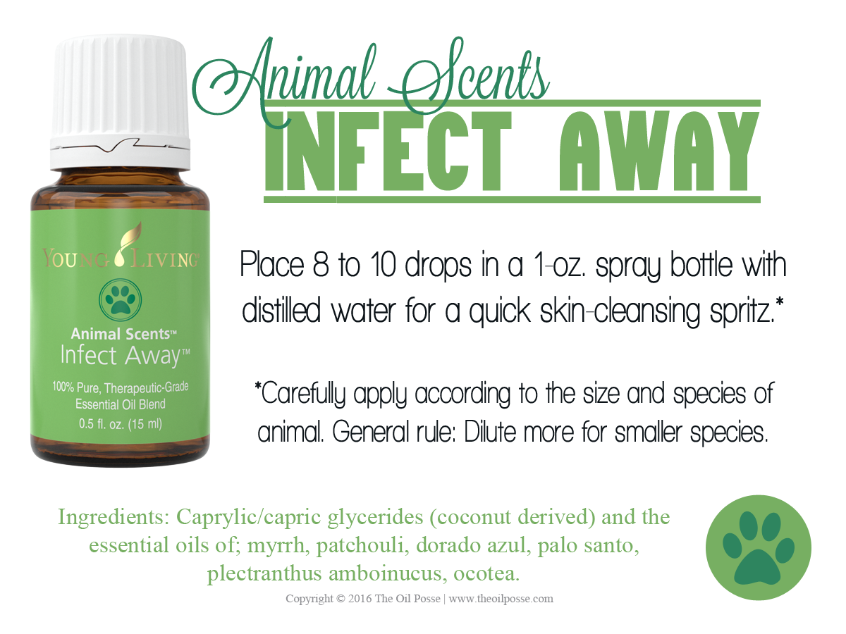 Love It, Share It: Infect Away | The Oil Posse