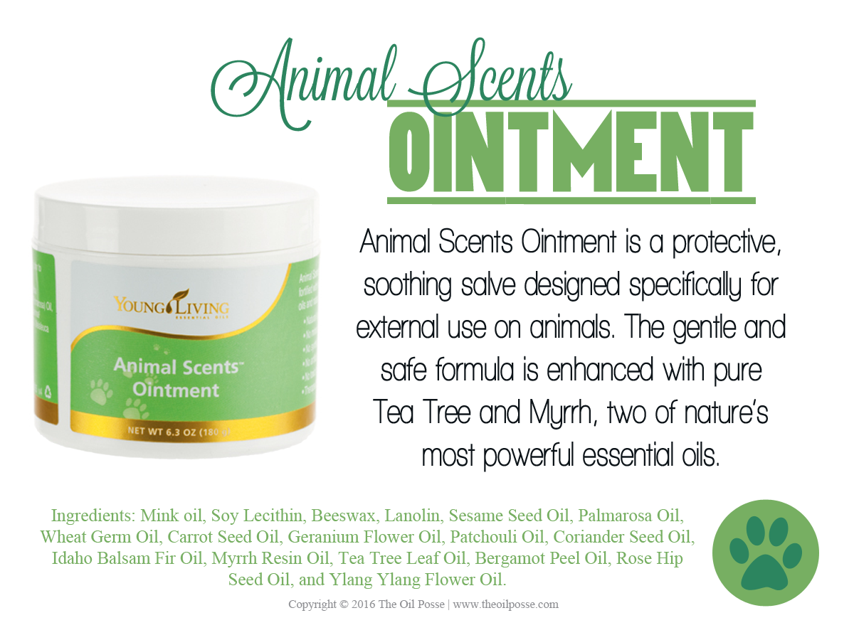 Art Line Young Living : Love it share animal scents ointment the oil posse