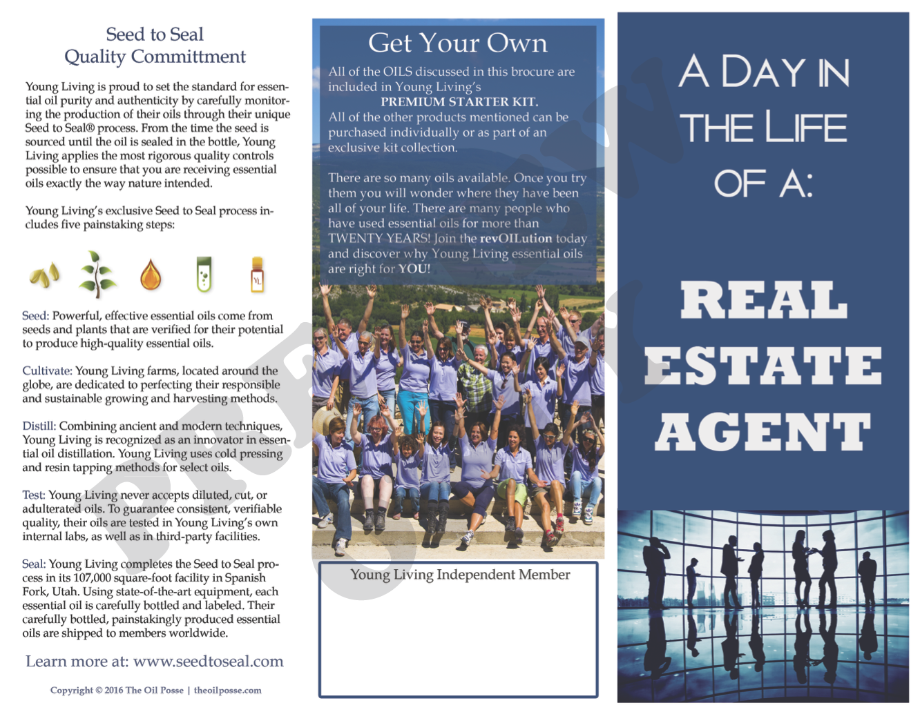 Brochure: Real Estate Agent, A Day in the Life | The Oil Posse