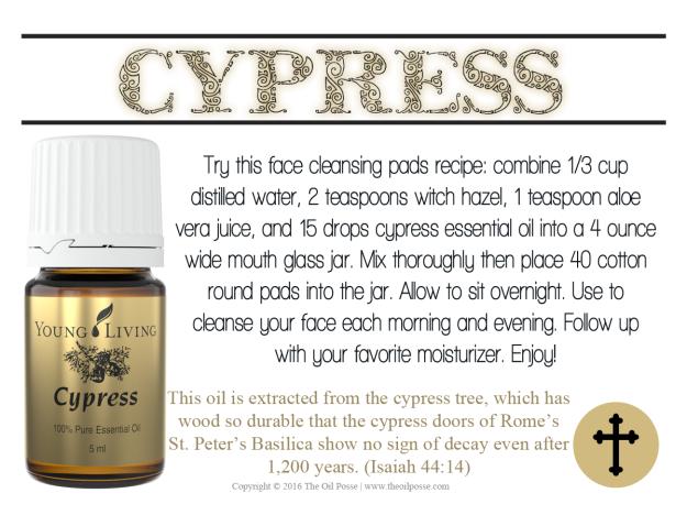oas_cypress_loveitshareit