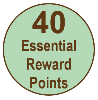 40erpoints