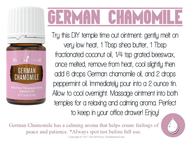 germanchamomile_loveitshareit