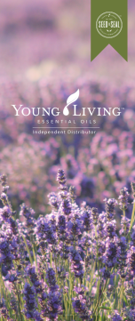 YL_LavenderField_2017_PREVIEW