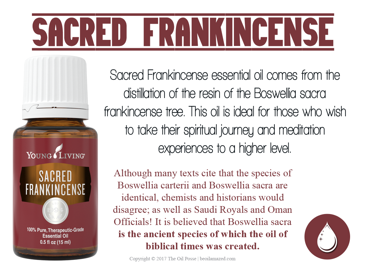 Love It Share It Sacred Frankincense The Oil Posse
