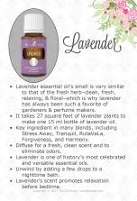 Lavender_BridalExpo_USPSK