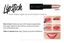 LipstickDaydream_SavvyMinerals_ClassCards