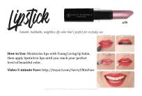 LipstickWish_SavvyMinerals_ClassCards