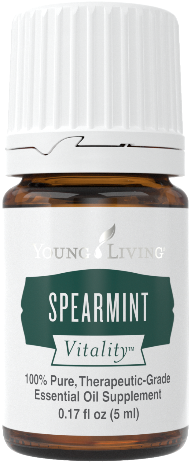 SpearmintV