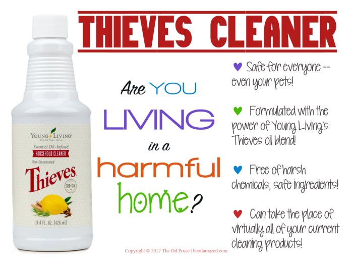 ThievesHC2017_LoveItShareIt