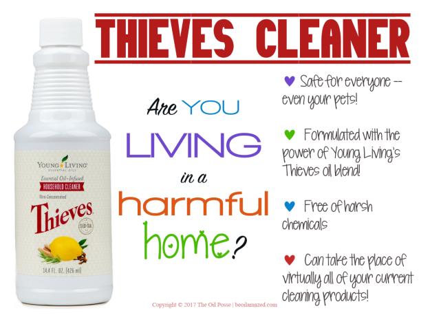 ThievesHC2017_LoveItShareIt_v2