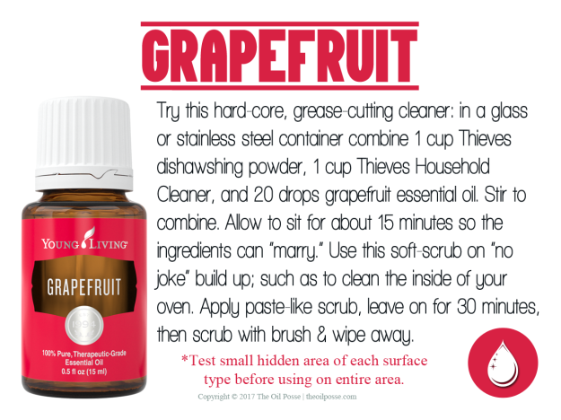 Grapefruit_LoveItShareIt