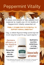 Peppermint_PSK-Autumn