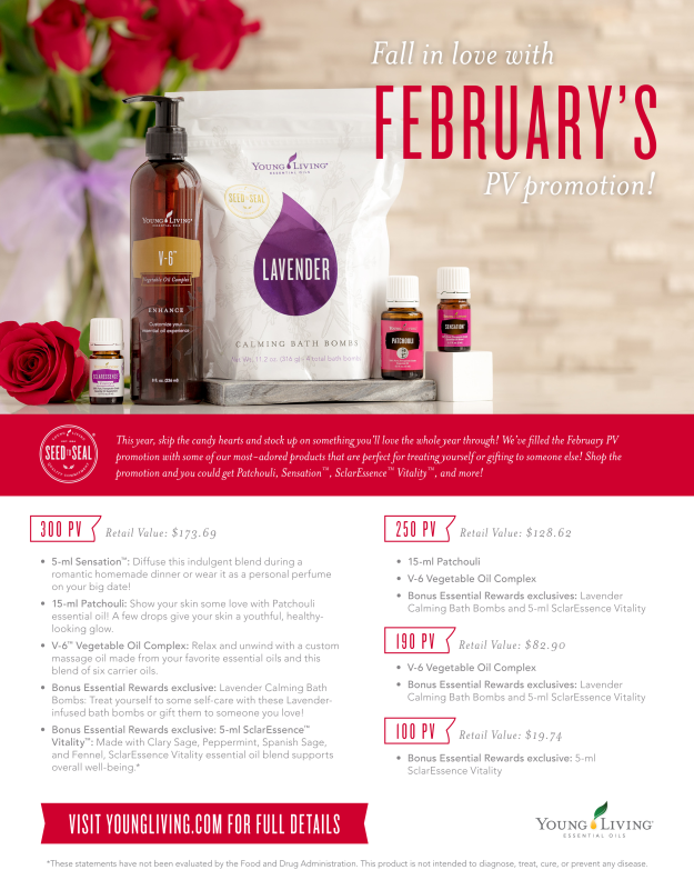 Feb2018-YLPromo-Flyer