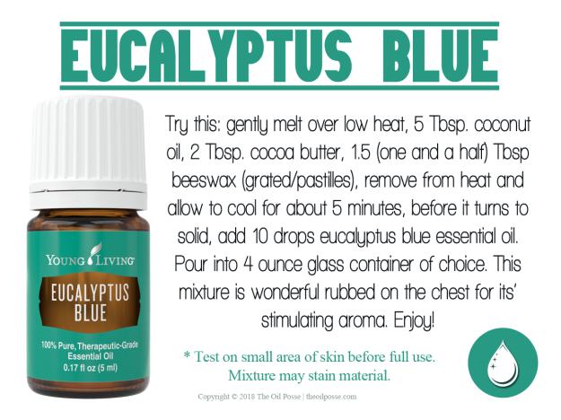 EucalyptusBlue2018_LoveItShareIt
